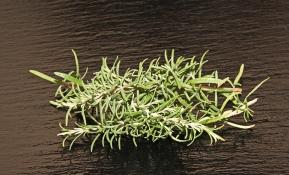 Profiter des bienfaits de 3 principales herbes aromatiques
